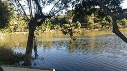 Parque Primo Raphaelli
