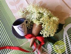 Gelato Sambuco - Bazovy kvet