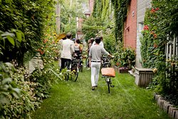 Private Bike Tour - Green Alleyway