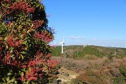 Aoyama Mountain Plateau