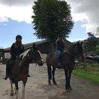 Hop Island Equestrian Centre
