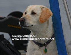 Rum Runner Charters