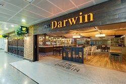 The Darwin