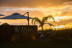 Alive Health Spa Resort