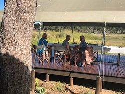 Deck where you can eat and view animals drinking water