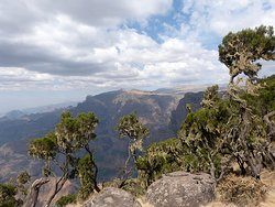 Trek Ethiopia Travel and Tours