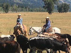 Jackson Hole Cowboy Adventure