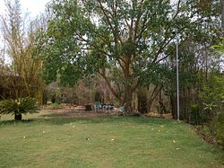 One of the best place to stay in Pench, Madhya Pradesh