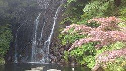 Tamadare Falls / Hien Falls