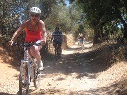 Algarve Bike Hire