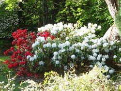 Pirianda Garden