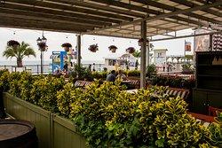 """в """"БОХО"""" особое внимание уделяется растениям и цветам!"""