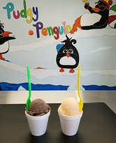 Pudgy Penguin Italian Ice