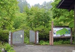 Karuizawamachi Botanical Garden