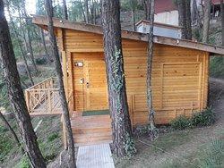 Kasauli Hills Resort