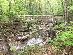 Bucklin Trail
