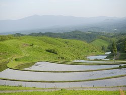 Ogi Rice Terraces