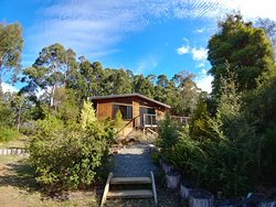 Southern Forest Accommodation