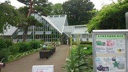 Tokyo Medicobotanical Garden