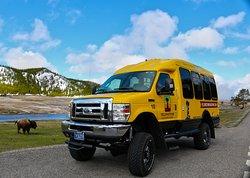Yellowstone Vacation Tours