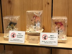 浅草・飴細工アメシン東京スカイツリータウン・ソラマチ店