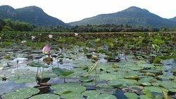 An Hai Lake