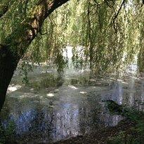 Loddon Nature Reserve