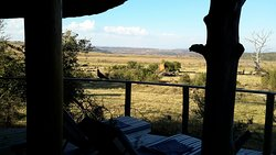Nambiti Plains from our balcony