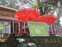 Bamboo Hut Lake Cafe