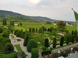 Villa Allegri, Arvedi