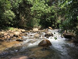 True hideout of nature