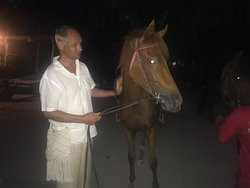 King Stable Horse Riding Tour