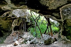 The Bat's Cave