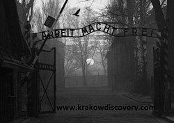 Krakow Discovery - Auschwitz Tours