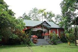 Wild grass lodge