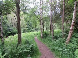 Roslin Glen Country Park