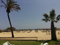 Tunisian delight