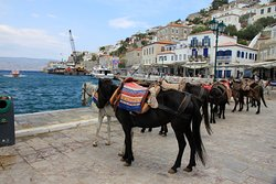 Hydra Walking Tours