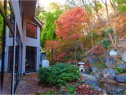 Our back yard, you can enjoy the fall color without leaving