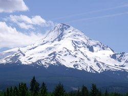 Eco Tours of Oregon