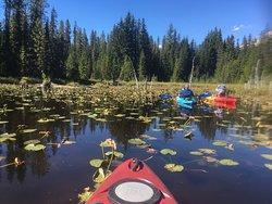 Hood River SUP and Kayak