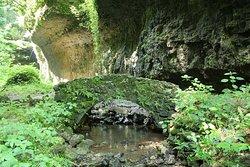 The Highlands Nature Sanctuary