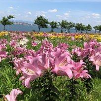 Osaka Maishima Yurien Garden