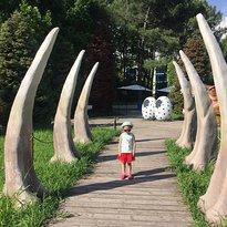 Dinosaur Park Zateryanny Mir