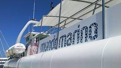 catamaran mundo marino en el puerto de gandia