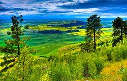 Kamiak Butte County Park