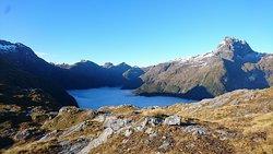 A random location near Doubtful Sound, Fiorldland National park (324684539)