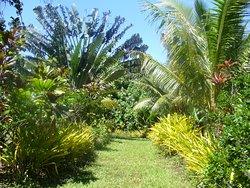 Ene'io Botanical Garden