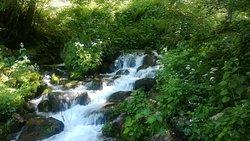 Ruta de la Cascada del Tabayon del Mongayu