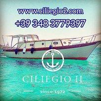Ciliegio II